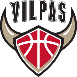 Salon_Vilpas_Vikings_logo.png